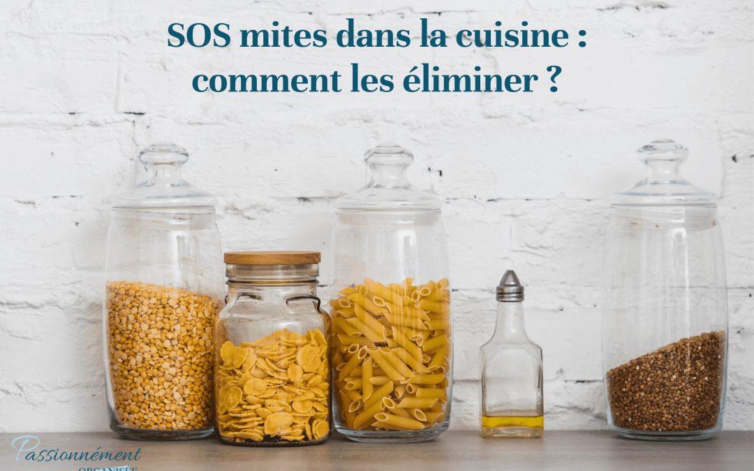 SOS mites dans la cuisine : comment les éliminer ?